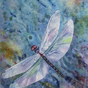 Butterfly Art - Skimming Dragonfly