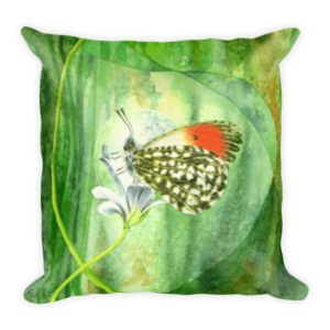 mockup 929d4e64 300x300 - Orange Tip Butterfly Cushion